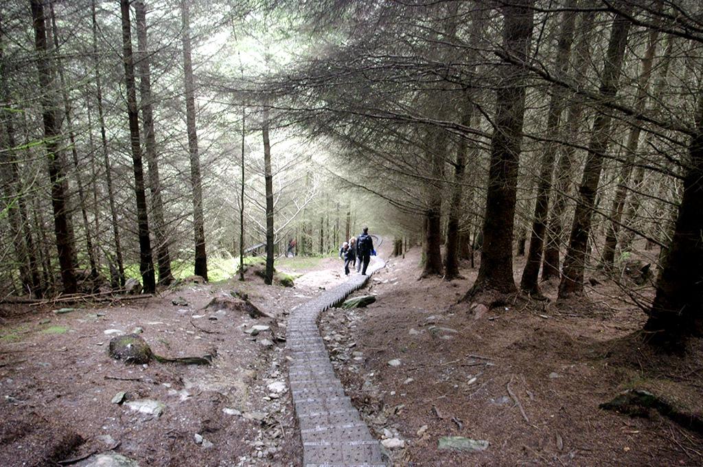 Glendalough14