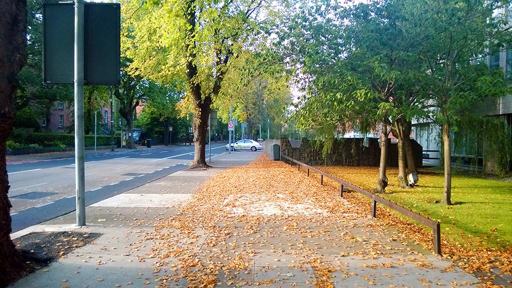 Dublin_Fall_2013