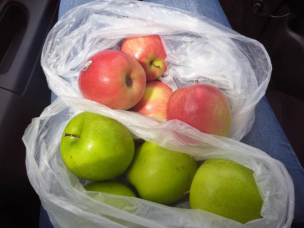 29_Tasmanian_Apples