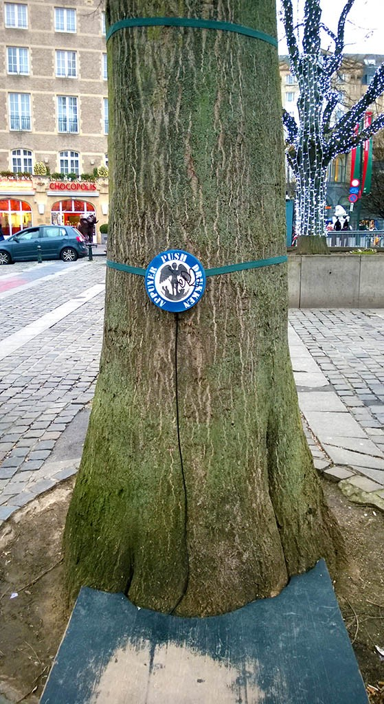 02_Wish_Tree_In_Bruxelles