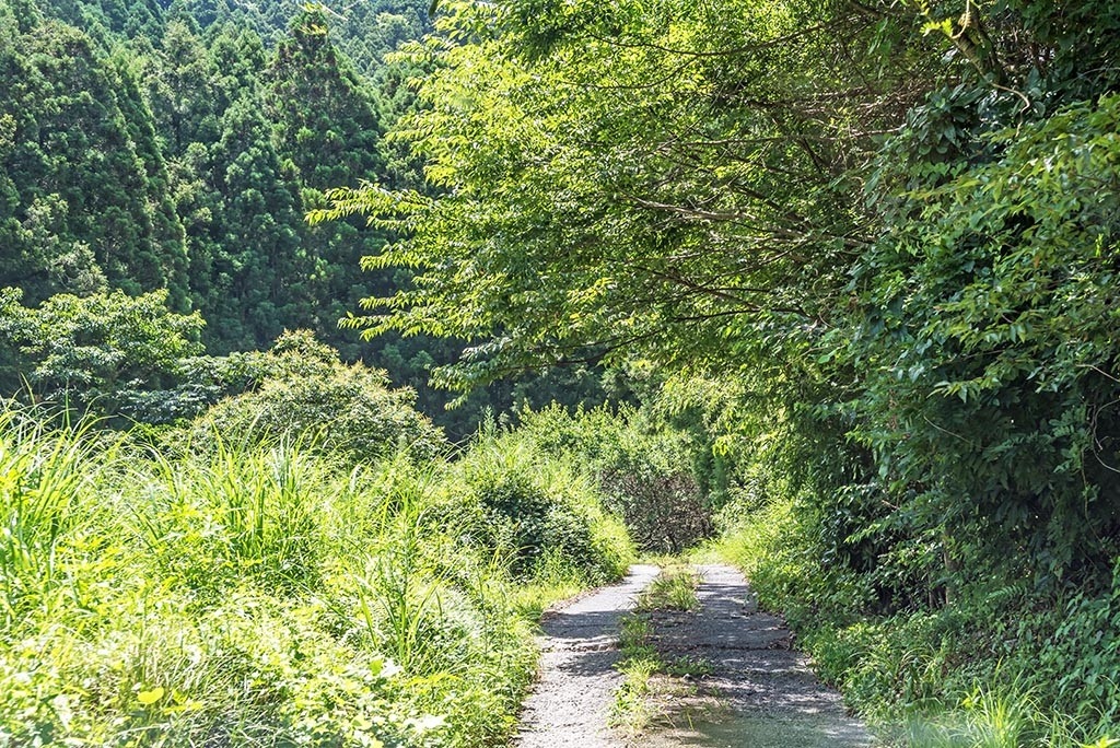 02-Fujieda-Very-Narow-Roads
