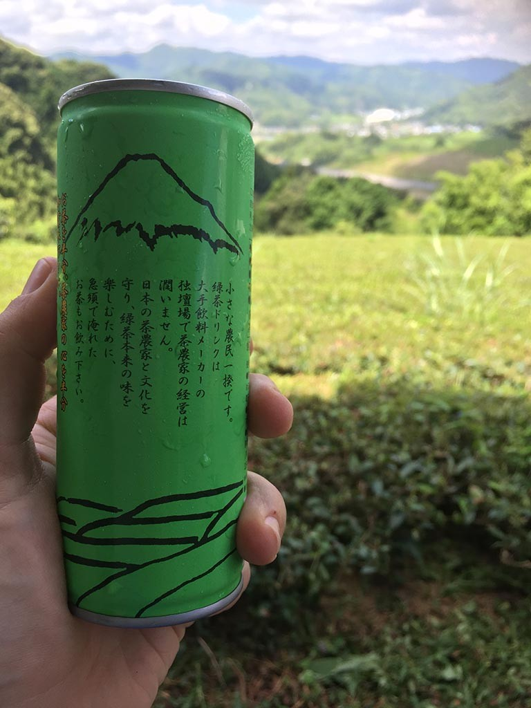 05-Green-Tea-From-These-Fields