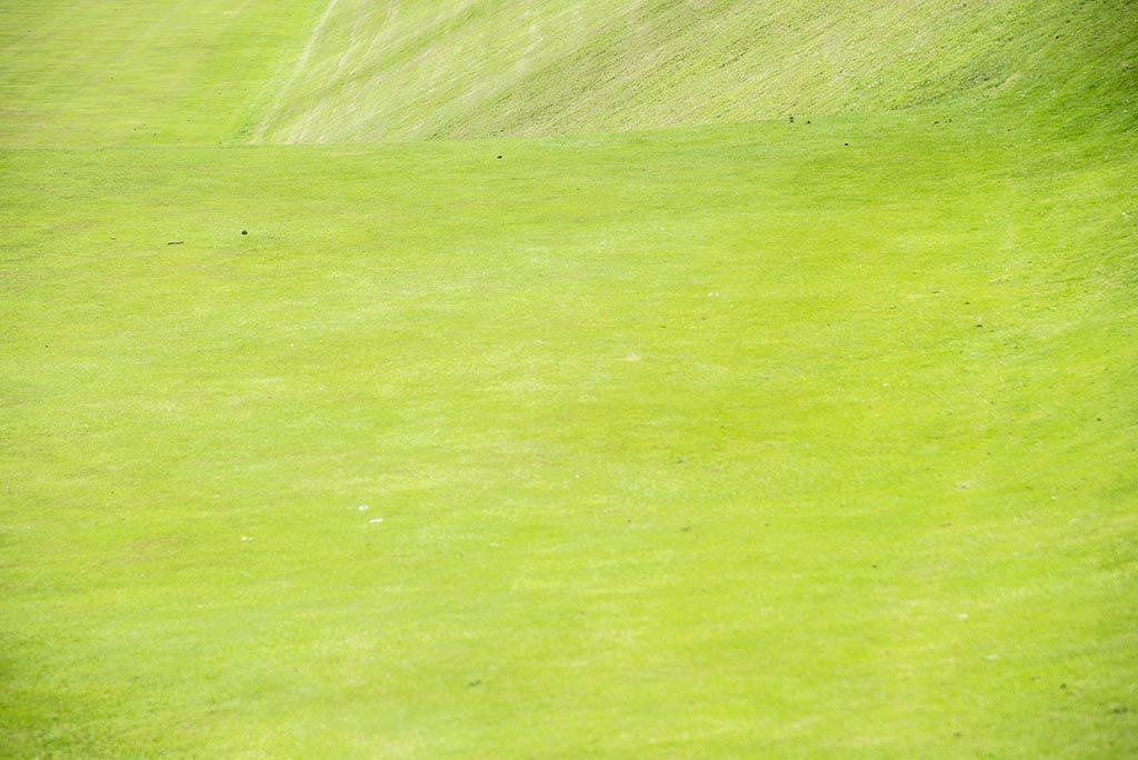 Just-Green-In-Powerscourt