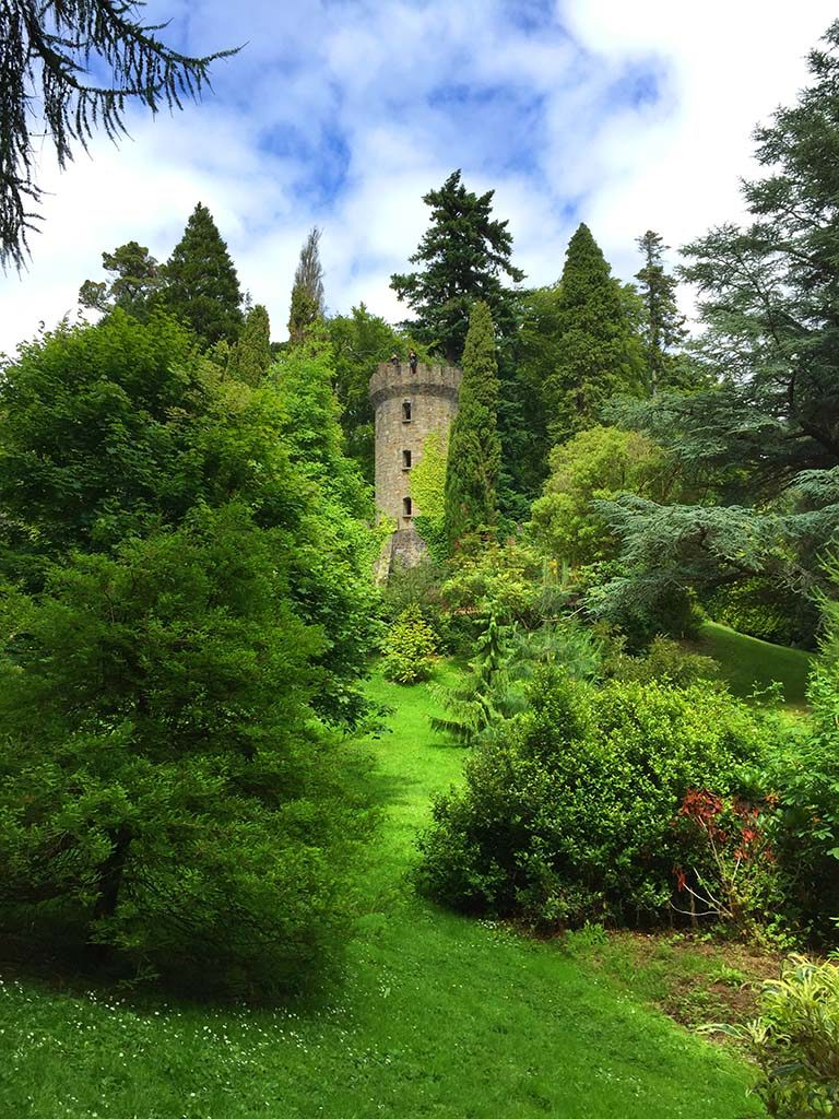 Arboretum-and-old-tower-in-Powerscourt